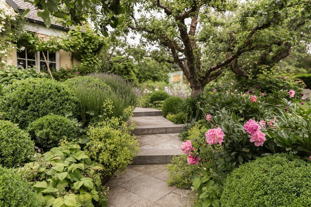 Treppe mit vielen Pflanzen